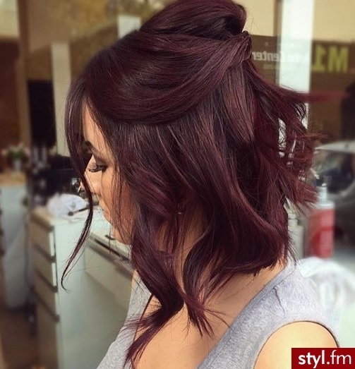 Hair Color and Haircut Cuts: The Best Models Hairdressing