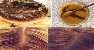 Here is the Recipe N ° 1 Anti Fall and Allow a Hair Growth Accelerated 3 times More Remarkable! Hair Styling Tips