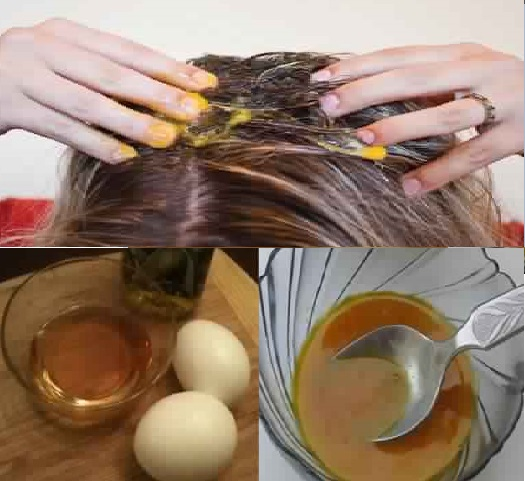 A Miraculous House Mask for Dry and Damaged Hair, To Try !!! Hair Styling Tips
